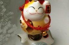 Мой китайский камбек: что нового я узнала за этот месяц