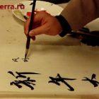 С чего начинать учить китайский: опыт самоучки